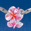 B1455 tlf - Hot Pink & Orange Plumeria Flowers - Silver Plated Large Hole Bead (6 per package)