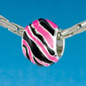 B1671 tlf - Wide Hot Pink Zebra Print Band - Silver Plated Large Hole Bead (6 per package)