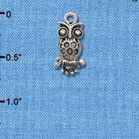 C2895 - Antiqued Silver Owl with Clear Crystal Eyes - Silver Plated Charm (6 per package)