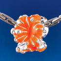 B1468 tlf - Hot Orange Hibiscus Flowers - Silver Plated Large Hole Bead (6 per package)