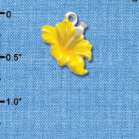 C2437 tlf - Hibiscus Flower - Yellow - Silver Plated Charm (6 per package)