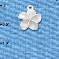 C3259 tlf - Pearl White Plumeria Flower - Silver Plated Charm (6 per package)