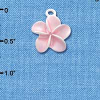 C3260 tlf - Pearl Pink Plumeria Flower - Silver Plated Charm (6 per package)