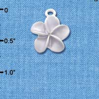 C3262 tlf - Pearl Purple Plumeria Flower - Silver Plated Charm (6 per package)